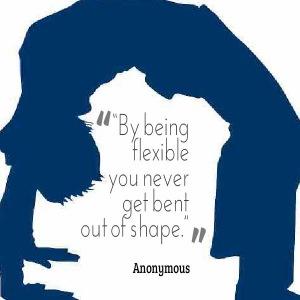 flexibility as an introvert
